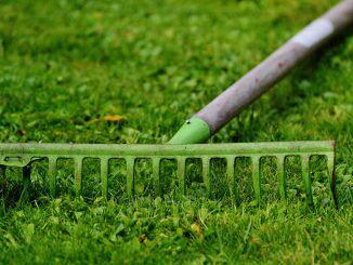 Le precauzioni da seguire quando si fa giardinaggio
